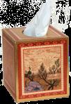 isfahantb tissue box